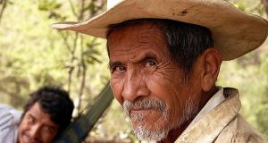 vocabhunt-learn-english-vocabulary-campesino