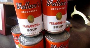 vocabhunt-learn-english-vocabulary-primordial-soup